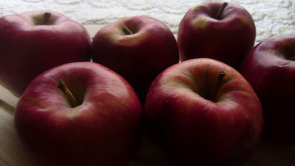 Apfelkuchen - Elmalı Kek