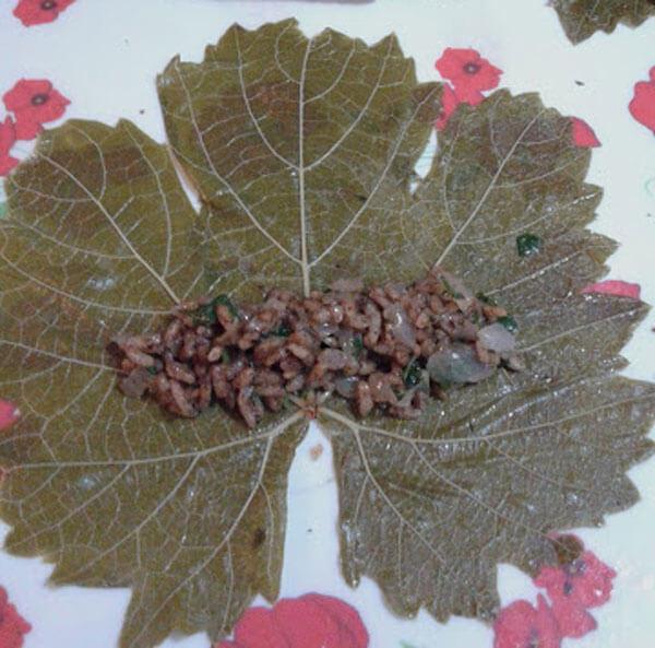 Gefüllte Weinblätter mit Korinthen - Kuş Üzümlü Yaprak Sarması
