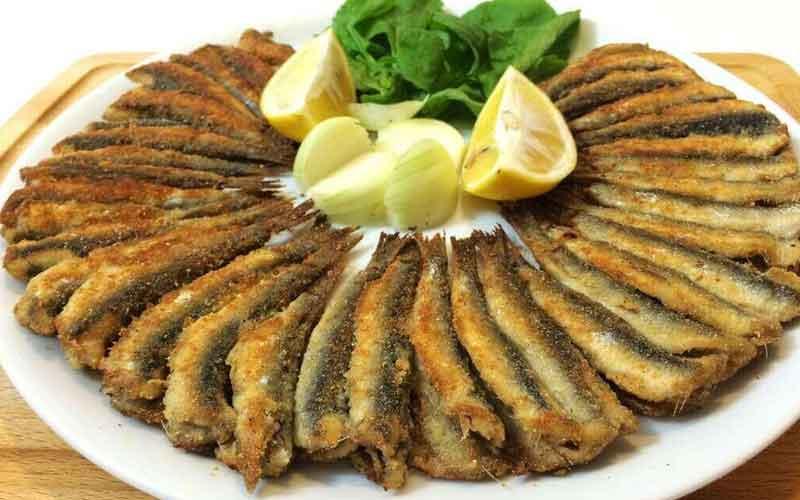 Fischgerichte Rezepte