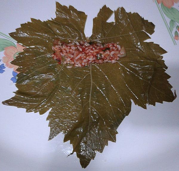 Gefüllte Weinblätter - Leziz Yaprak Sarması